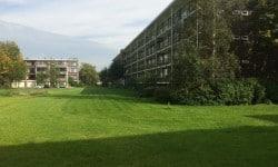 Alleen-Groen-NL-Projecten-5
